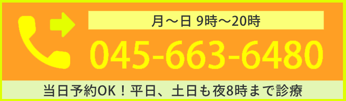 045-663-6480