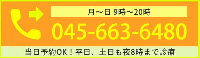 元町中華街歯科 電話番号 0456636480